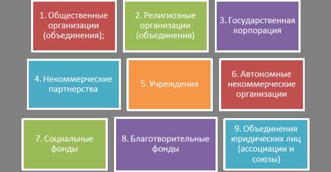 некоммерческая форма организации учреждение