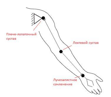 Схема разработки суставов гонартроз коленного сустава 2 степени фото