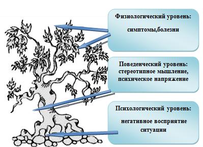 Факторы возникновения стрессовых ситуаций у человека, История ...