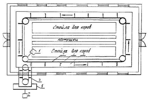 схема навозоуборочного транспортера