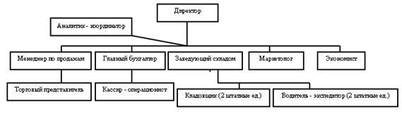 Организационная структура ООО
